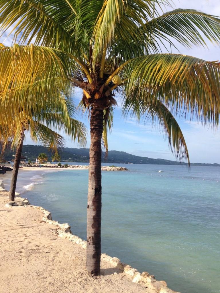 Secrets Wild Orchid Jamaica Beach