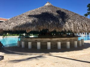Paradisus Palma Real Swim Up Bar