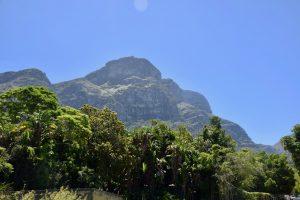 Cape Town Botanical Garden