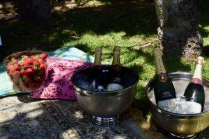 Champagne Cape Town