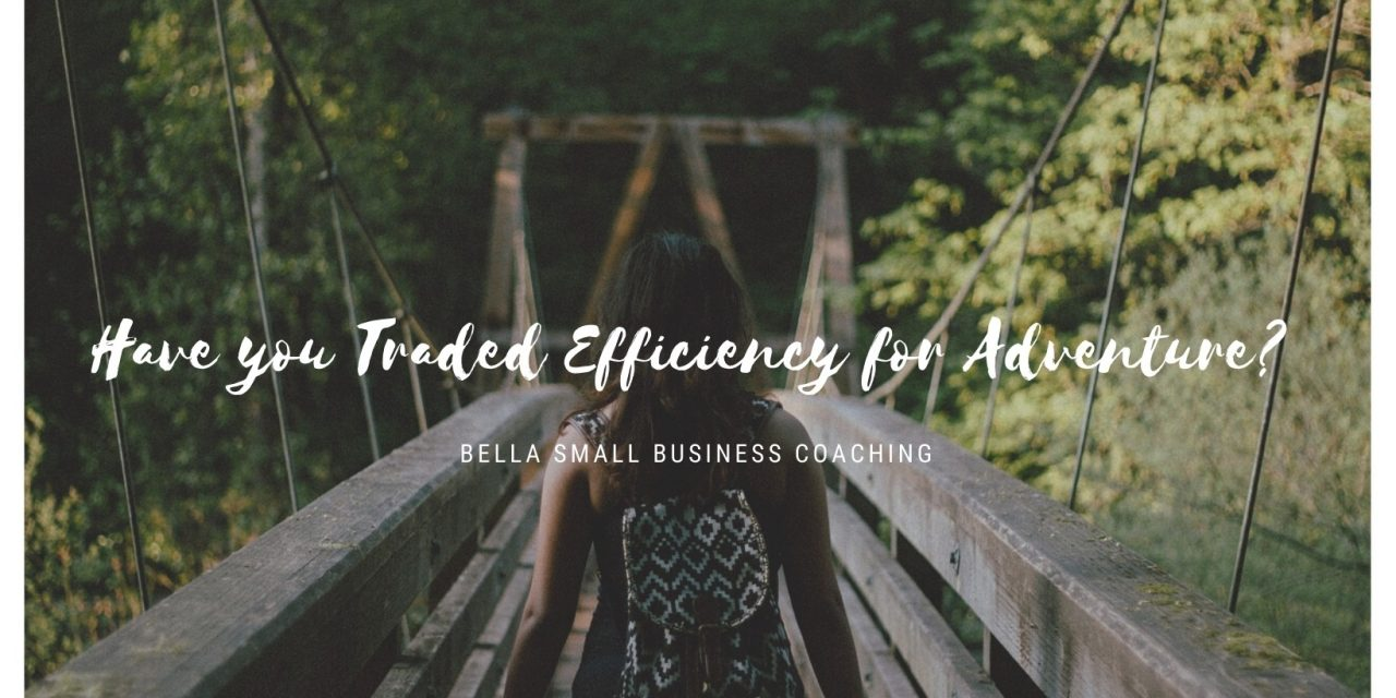 Have you traded Efficiency for Adventure?
